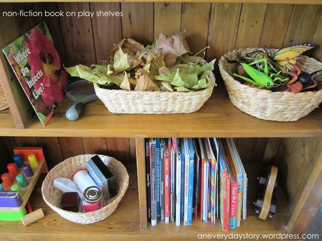 Reggio: Non-fiction Books for a Deeper Level of Play