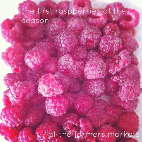 raspberries {An Everyday Story}