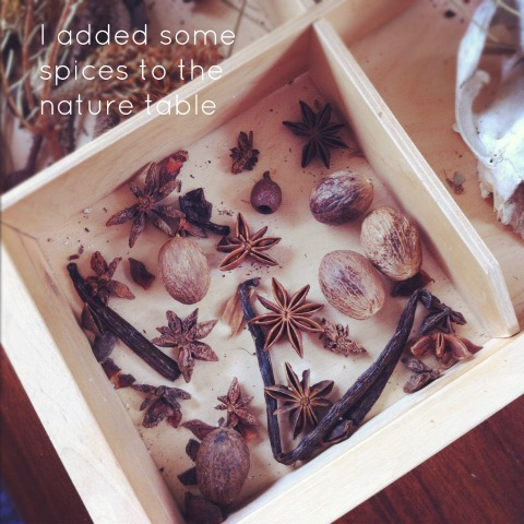 spices nature table {An Everyday Story}