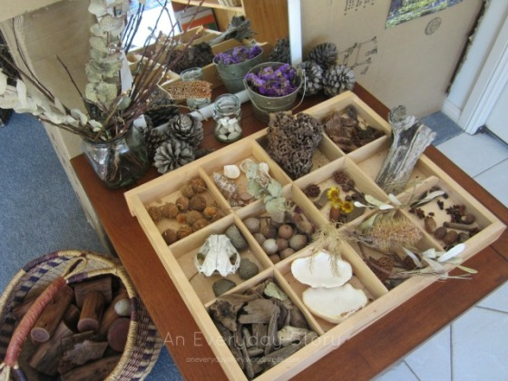 Nature Table in a Reggio playroom - An Everyday Story
