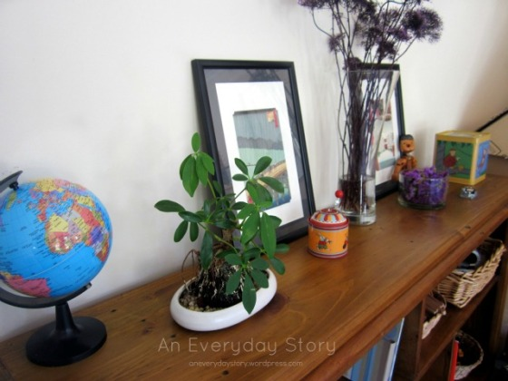Plants and flowers in a Reggio playroom - An Everyday Story