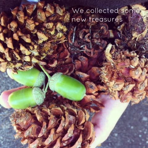 Collecting natural treasures - An Everyday Story