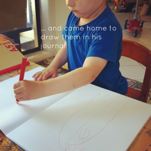 Project based learning with Preschoolers - An Everyday Story