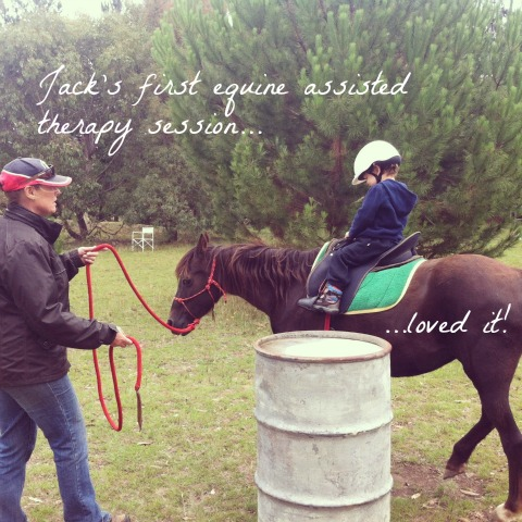 Equine Assisted Therapy - An Everyday Story