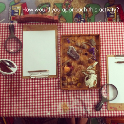 reggio art provocations with nature - An Everyday Story